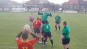 Rugby. Arad - Suceava