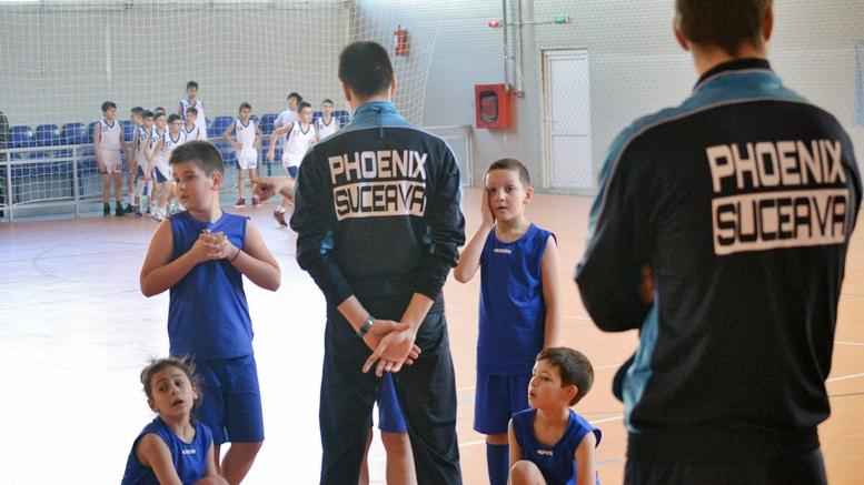 baschet Phoenix